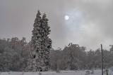 Mimo nie najlepszej pogody, w górach jest pięknie! [ZDJĘCIA]