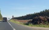 Przy trasie S3 wycinka 400 ha lasu, galeria handlowa w Zastalu... takie zmiany szykują się w Zielonej Górze