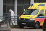 Raport. Koronawirus na Śląsku: 236 chorych, 7 osób zmarło