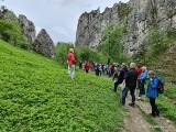 Na wycieczkę z PTTK: odwiedź Dolinę Sąspowską