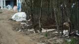 Tak wyglądają tereny zielone na osiedlu Skorupy. Rozbite butelki, puste opakowania, szmaty, folie i styropian (wideo, zdjęcia)