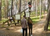 """Park Narodowy """"Bory Tucholskie"""" spogląda na Jezioro Charzykowskie"""