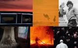 Koronawirus, pożary, wybory w USA, śmierć Bryanta i Maradony - taki był rok 2020. Zobacz najlepsze zdjęcia agencji AFP!