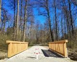 Nowa ścieżka w Parku Dyrekcyjnym w Białowieży otwarta w majówkę. Nadleśnictwo Białowieża zaprasza