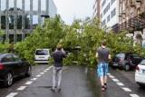 Niż Fabienne nadciąga! Polscy Łowcy Burz ostrzegają: W nocy w Polsce prędkość wiatru osiągnie 100-110 km/h. Taki wiatr łamie drzewa i słupy