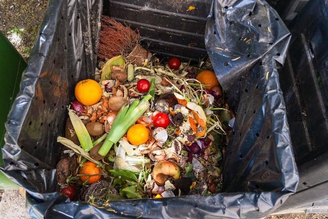 Marnotrawienie żywności to pojęcie odnoszące się do zachowań konsumenckich – to wyrzucanie zepsutej żywności lub po prostu skutek zbyt dużych zakupów.
