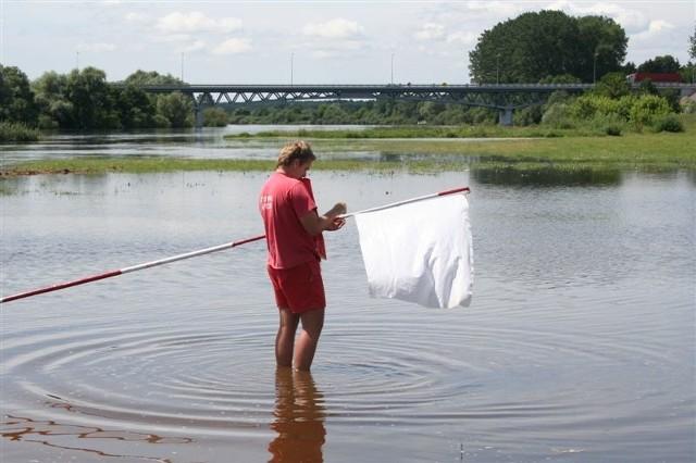 Dziś i w następnych dniach na plaży w Broku znów powiewać będzie biała flaga.