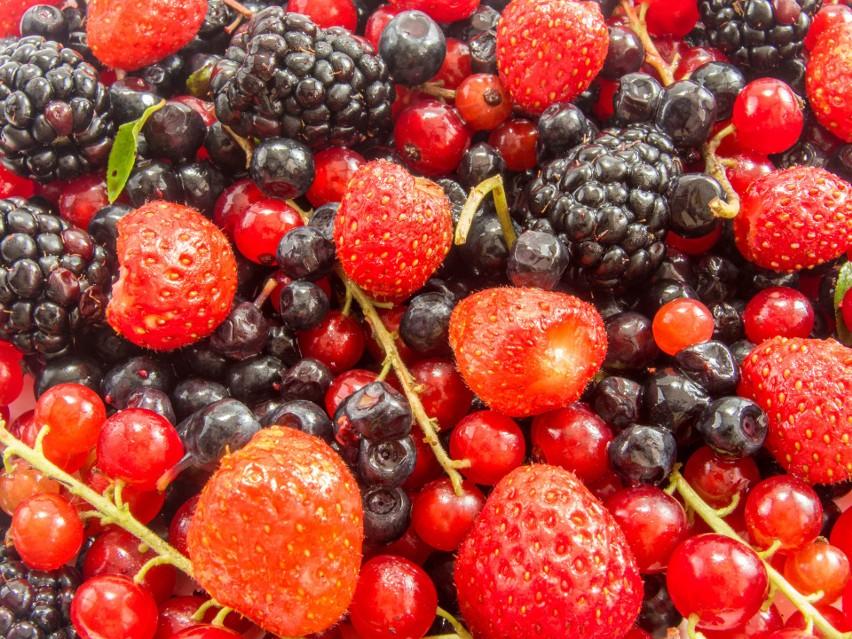 Nigdy nie jedz owoców prosto z krzaka! Robiąc coś takiego możesz się nabawić chorób, które są groźne, a początkowo nie dają wyraźnych objawów.Zobacz listę owoców, które mogą stanowić zagrożenie.