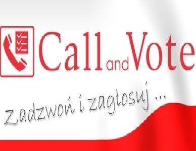 Właścicielem internetowego serwisu wyborczego CallandVote.pl jest kielecka firma Infonetax.