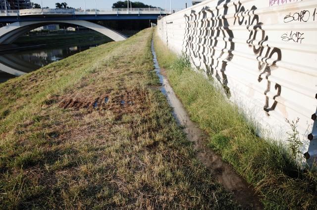 Oleista ciecz wypływa z ogrodzonej budowy tuż obok Mostu Zamkowego