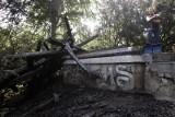 W Parku Południowym spłonęła ponad stuletnia altana. To podpalenie? [ZDJĘCIA]