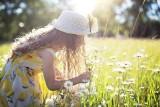 Lato przyjdzie w połowie maja. Długoterminowa prognoza pogody na maj, czerwiec i pierwszą połowę lipca 2021