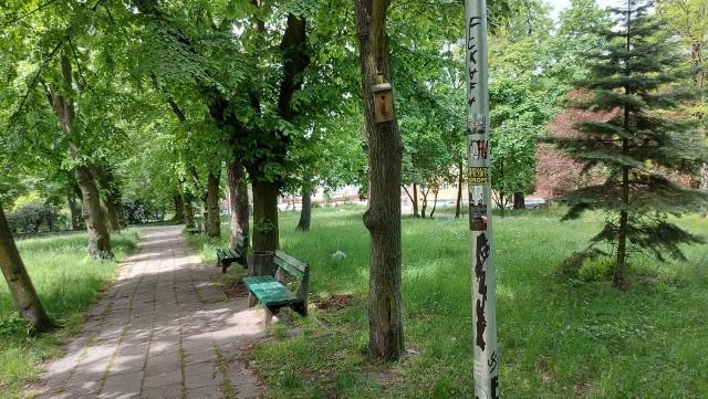 Wandale oszpecili ławki i latarnie w Parku Piastowskim w Zielonej Górze