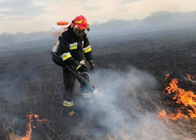 Strażacy z gminy Jedlińsk już po południu mieli pełne ręce roboty, musieli gasić płonące trawy w kilku miejscach.