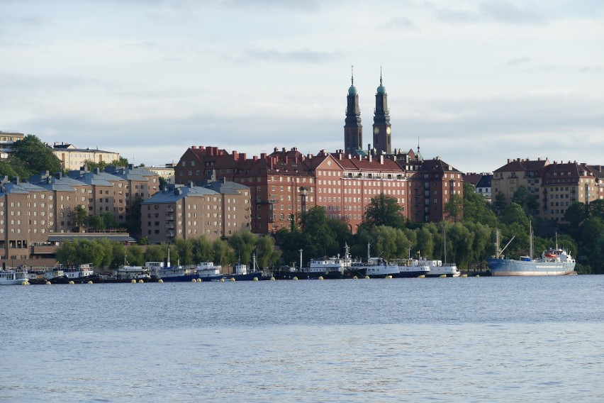 Naukowcy apelują do szwedzkich władz o wzmocnienie ochrony.