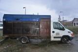 Dwaj obywatele Rumunii oskarżeni o okrutne znęcanie się nad zwierzętami. Przewozili konie w koszmarnych warunkach. Jeden z nich padł