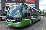 Po Miechowie będą jeździć dwa czeskie autobusy?