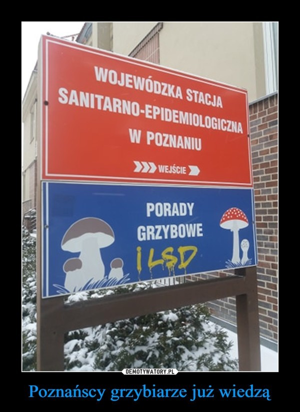 Poznań na demotywatorach gości bardzo często. Z czego śmieją...