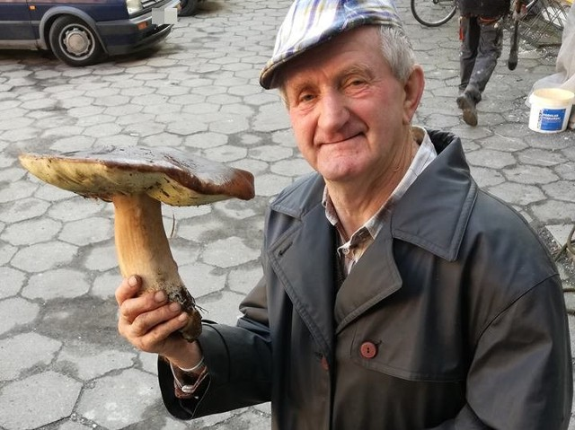 Mieszkaniec Domu Pomocy Społecznej w Lubsku, Henryk Jarząb wybrał się w czwartek (27 października) na grzyby. Jak widać na zdjęciach, zbiory były udane. Jeden prawdziwek ważył 1,42 kg, natomiast kolejne dwa 1,36 kg. I oprócz tego pan Henryk zebrał całe wiaderko kani. Zbiory miały miejsce na terenie Lubska.Zobacz też: Mówicie, że nie ma grzybów? Zobaczcie te zdjęcia!