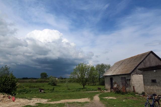 We wsi Kulik (gmina Siedliszcze)