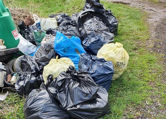 W Przedmieściu Dalszym pracownicy urzędu zebrali aż osiemnaście worków śmieci.