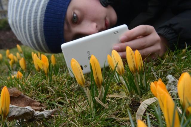 Pierwszy Dzień Wiosny 2016. Kiedy wypada pierwszy dzień wiosny? Wiosna kalendarzowa i astronomiczna