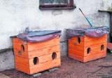 Bezdomne koty dostały ciepłe domki. Budki są luksusowe, mają cztery pokoje i ruchomy dach