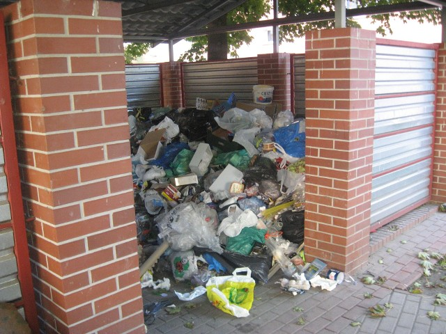 śmieciZdjęcie zrobione zostało przy ul. Łużyckiej w Gorzowie, gdzie w altance nie ma śmietnika