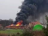 Spłonął budynek gospodarczy w Folwarku Pszczew. Straty idą w miliony [ZDJĘCIA]