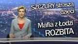 Info z Polski 1 luty 2018. ZOBACZ VIDEO! [WIADOMOŚCI]