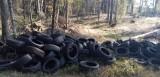 Transport opon wyrzucony w lesie w okolicach Lipusza. Straż leśna szuka sprawcy