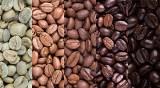 Czy kawa jest zdrowa? TOP 15 faktów i mitów o kawie. Czy kawa podnosi ciśnienie? Czy można pić ją w ciąży? Czy wypłukuje magnez?