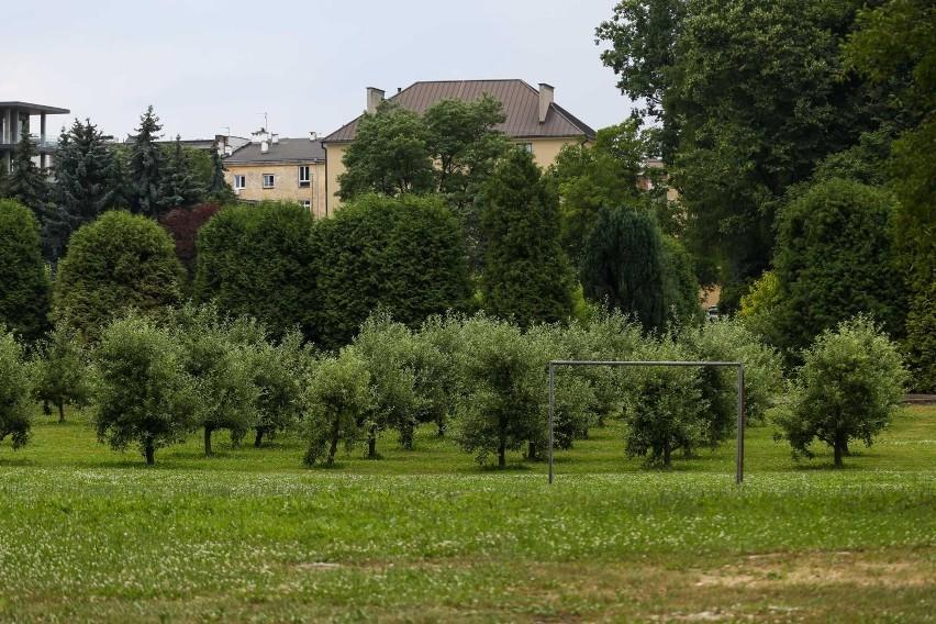 Kraków. Ministerstwo zastopowało budowę hotelu w ogrodzie księży Misjonarzy pod Wawelem [ZDJĘCIA] 24.07.2021