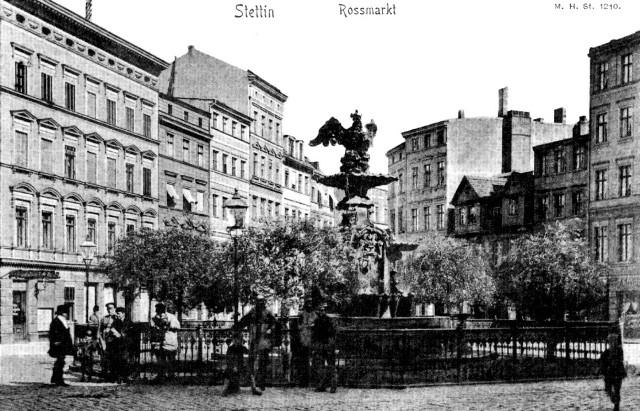 Symbol placu czyli obecna fontanna Orła Białego