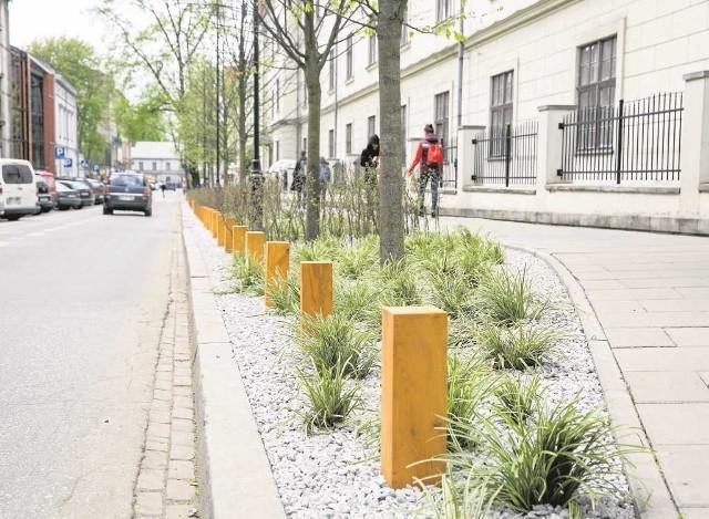 Świeżo posadzona zieleń koło biblioteki przy ul. Rajskiej