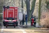 Są wyniki sekcji zwłok obywatela Ukrainy śmiertelnie ugodzonego nożem na ul. Parkowej w Bydgoszczy