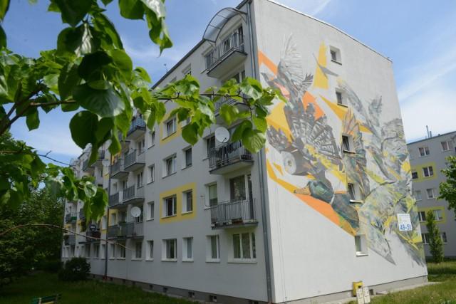W Zielonej Górze znajduje się wiele interesujących murali i graffiti zdobiących budynki