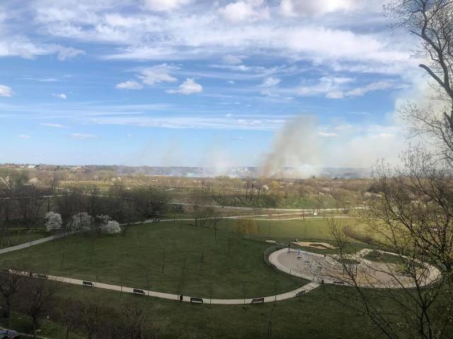 W okolicach ul. Torowej w Lublinie trwa pożar traw