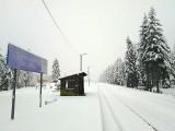 W Sudetach sypie śnieg. Zrobiło się biało, zamknięty szlak (ZOBACZ)