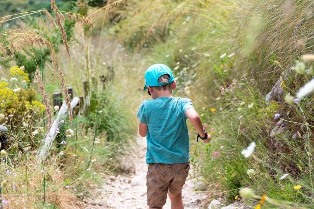 4-latek wybiegł z przedszkola w Łodzi do ogrodu. Zdjęcie ilustracyjne