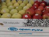Jabłka Grójeckie będą promowane także w Meksyku. Znajdą się w szarlotkach