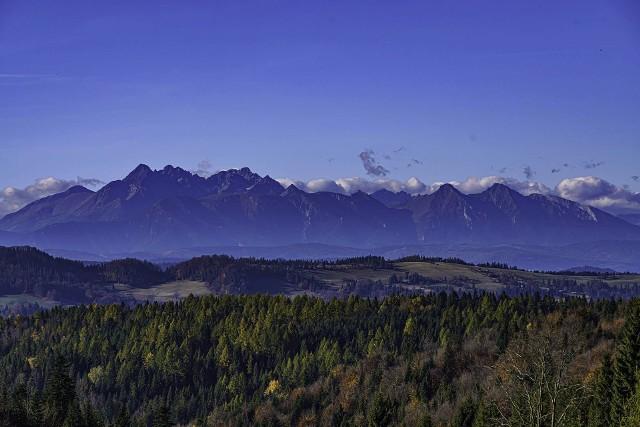Rozpościerający się widok na Tatry to najlepsza nagroda za trudy wspinaczki na Beskidzie szczyty. Taką panoramę zobaczymy  z Obidzy (931 m), z której warto następnie udać się na Eliaszówkę (1023 m). Na górze od kilku lat stoi wieża widokowa