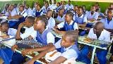 Prawdziwa Afryka. Ptaki i myszy wyjedzone, 90 uczniów w klasie. (zdjęcia)