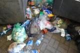 Poznań: Firmy śmieciowe będą dokumentować przypadki nieselektywnej zbiórki. Koniec z wyrzucaniem bioodpadów w foliówkach