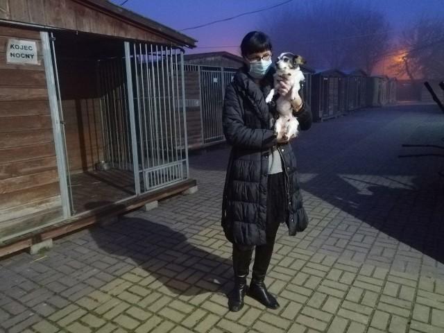 Marta Olesińska i Babku, ambasadorka adopcji wraz z podopiecznymi czekały aż noworoczna kanonada się skończy.