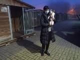 Łodzianie nie zdali egzaminu w sylwestra! Mimo próśb o północy wokół schroniska dla bezdomnych zwierząt huczało od wybuchów jak na wojnie