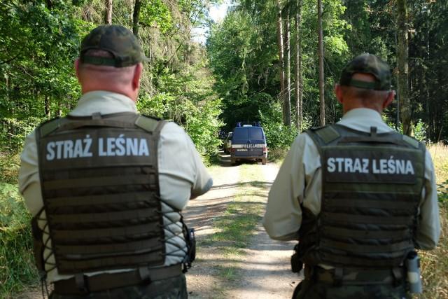 Strażnicy leśni w akcji.