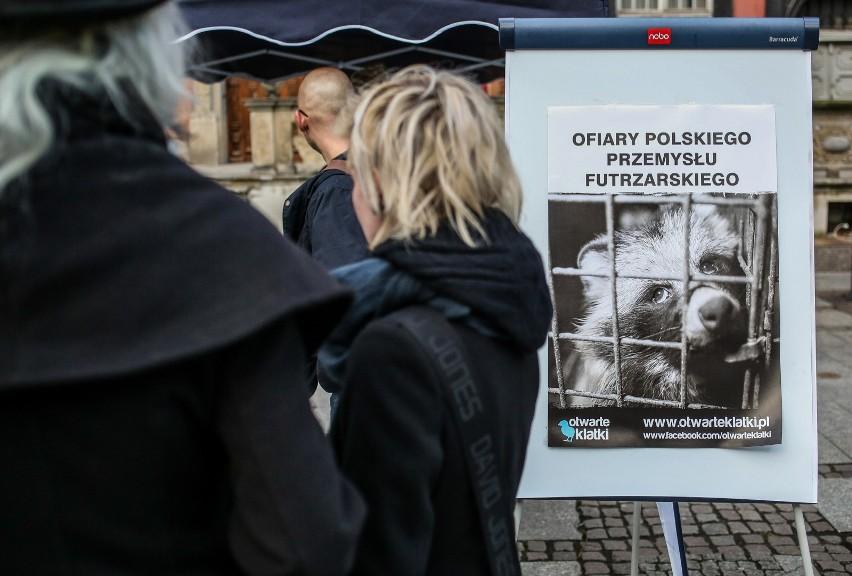 """""""Piątka PiS dla zwierząt"""": Będzie m.in. zakaz hodowli zwierząt futerkowych i zakaz wykorzystywania zwierząt w cyrkach"""