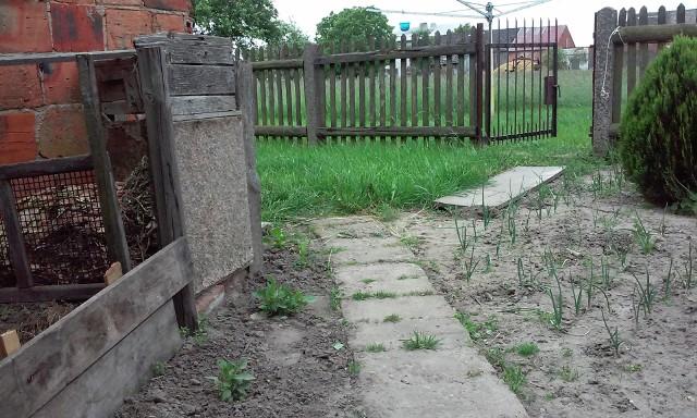 Ogródek w majuBy w naszym przydomowym ogródku warzywa były dorodne i zdrowe, należy przed ich wysianiem odpowiednio zadbać o glebę. Właściwa struktura gleby i wystarczający zasób składników mineralnych, którymi odżywiają się rośliny, to podstawa.