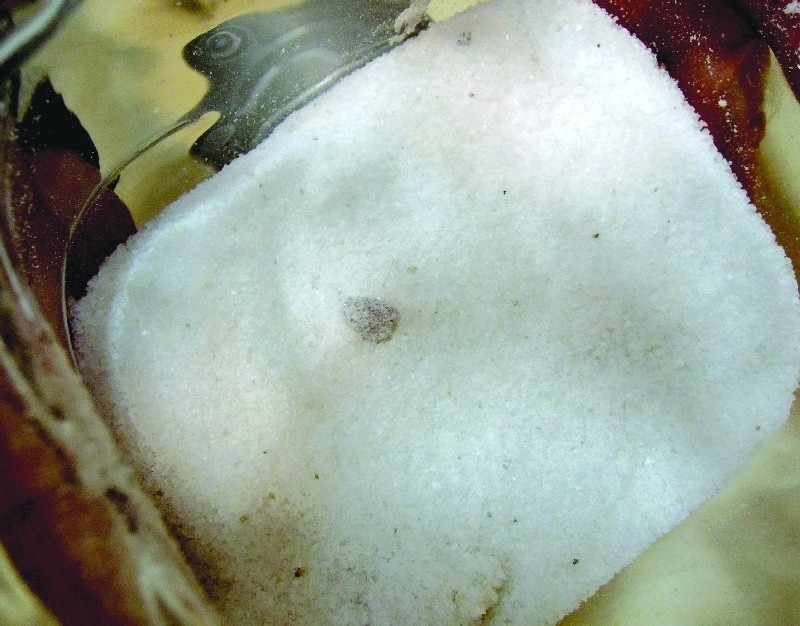W kupionej w E.Leclerc soli znajdują się ciemne grudki.
